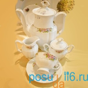 kofejnyj-serviz-15-pr-maria-teresa-g158-iz-farfora-smielow